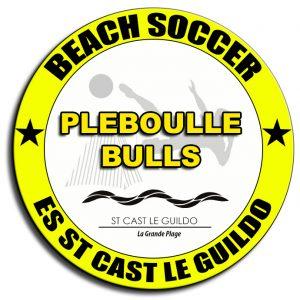 Pleboulle Bulls